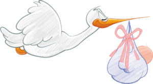 Stork carrying a baby, starting the conversation. Where does life come come from?