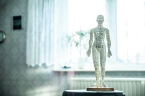 Statue of human covered in the meridian lines used in acupuncture