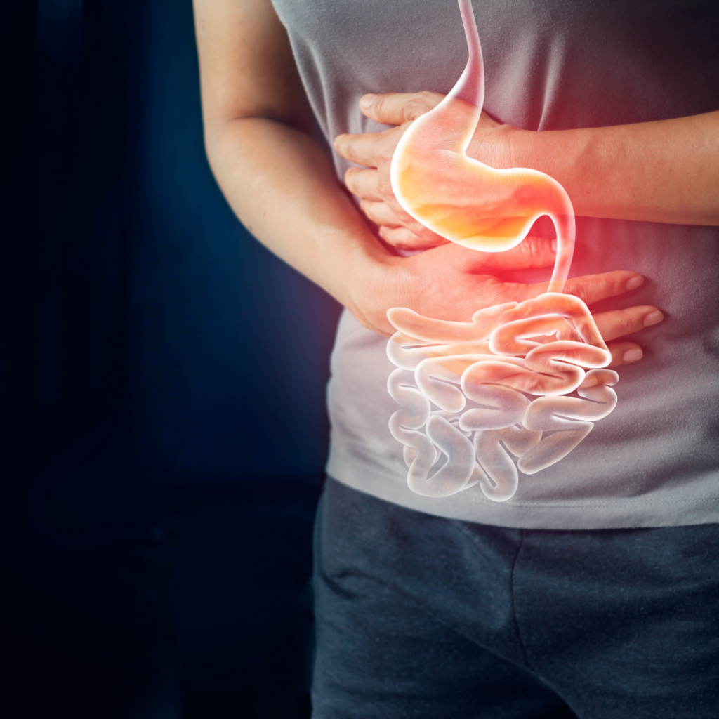 Think about it, if your nerve system gets stuck in survival mode, you will automatically put digestion on the back burner. Then the smooth muscle tone of your digestive tract, including the small and large intestines changes. Which can lead to a loss of ease with the essential function of digesting and absorbing food, leading to fluctuations between diarrhoea and constipation, cramping, heartburn and GERD, bloating after eating, etc.